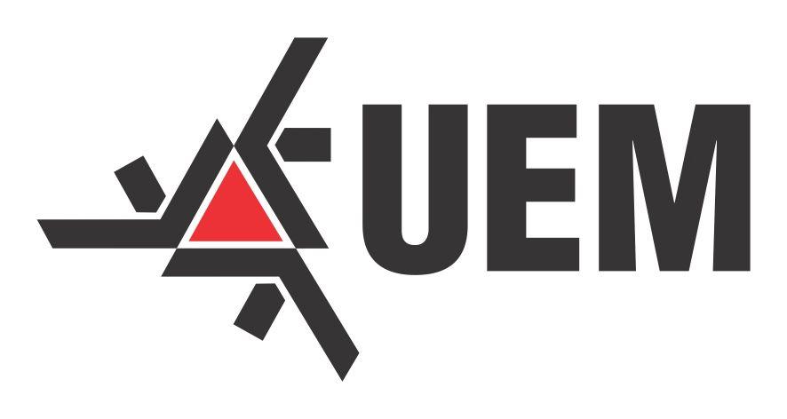 Vestibular UEM 2019