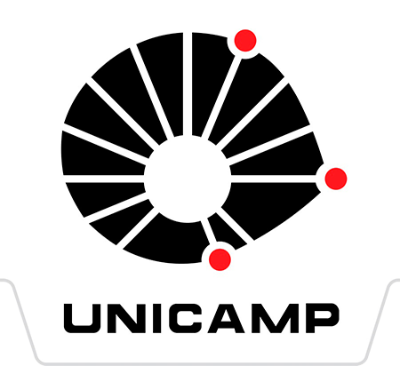 Vestibular Unicamp 2019